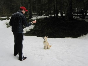 ExLight and Playing Fetch with Lobo - Larch Mountain, OR