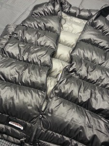 Argon down vest